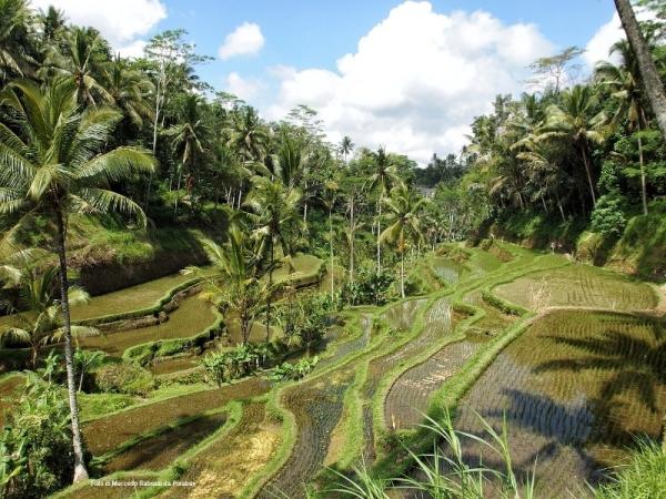 Singapore e Bali Viaggio di Nozze