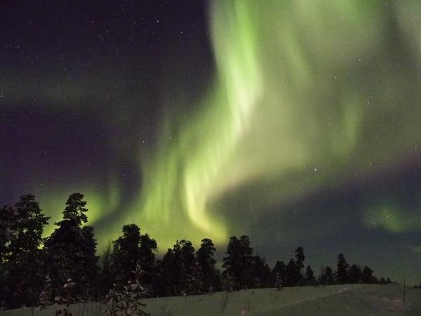 Tour Norvegia - Gennaio, Febbraio e Marzo 2022 Tour Culturali